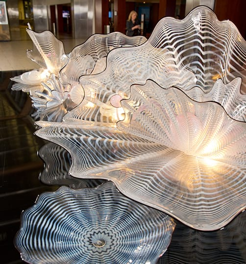 Ancestor White Seaform, Dale Chihuly
